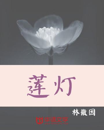 文艺 手绘莲